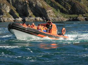 Explore some of the west coast wildlife and scenery in spectacular style by RIB boat